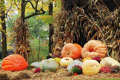 Photograph - Autumn Bounty by James Kirkikis