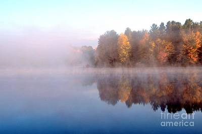 Fog Photograph - Autumn Bouquet by Terri Gostola