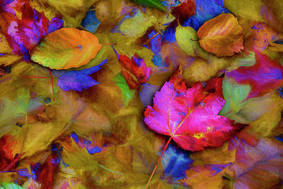Fallen Leaf Digital Art - Autumn Breeze by Paul Wear