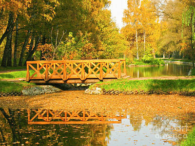 Photograph - Autumn, Bridge In Park by Irina Afonskaya