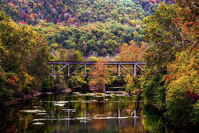 Photograph - Autumn Bridge by Ronda Ryan
