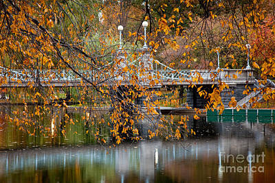 Autumn Bridge Art Print by Susan Cole Kelly