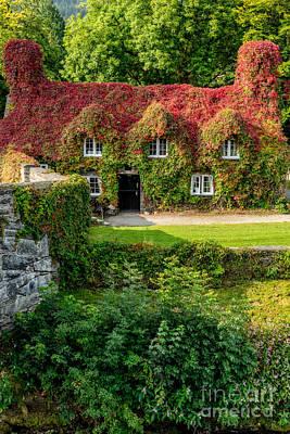 Llanrwst Digital Art - Autumn Brilliance by Adrian Evans