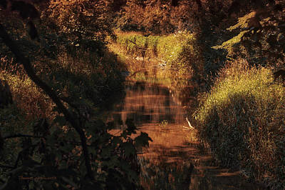 Autumn By The Argyle Creek Art Print by Thomas Woolworth