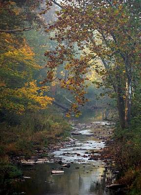 Photograph - Autumn By The Creek by Elsa Marie Santoro
