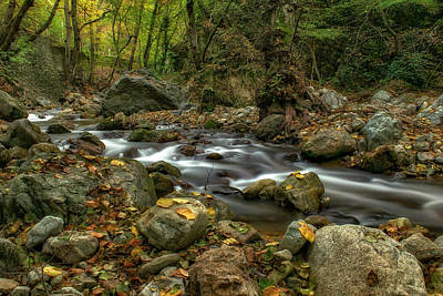 Of Autumn Photograph - Autumn By The River by Plamen Petkov