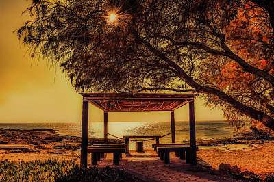 Photograph - Autumn By The Sea by Demitri Vetsikas