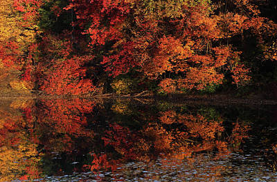 Metal Photograph - Autumn Canvas by Juergen Roth