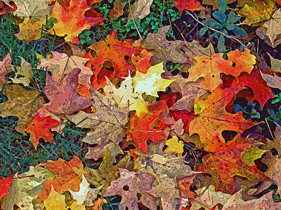 Autumn Carpet Art Print
