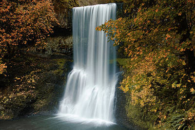 Photograph - Autumn Cascade by Don Schwartz