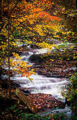 Photograph - Autumn Cascade  by Parker Cunningham