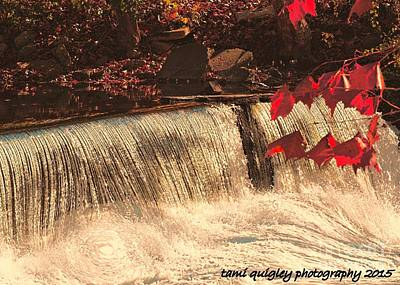 Photograph - Autumn Cascade by Tami Quigley