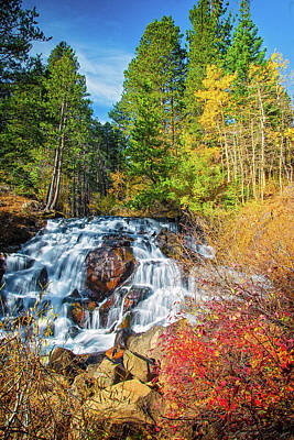 Photograph - Autumn Cascades In The Sierra by Lynn Bauer