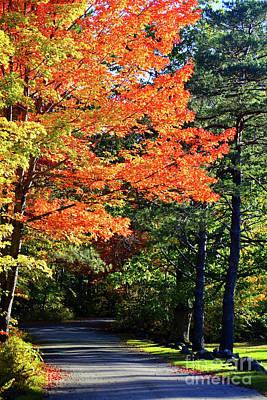 Photograph - Autumn Charm by Patti Whitten