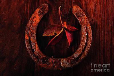 Photograph - Autumn Charm by Randi Grace Nilsberg