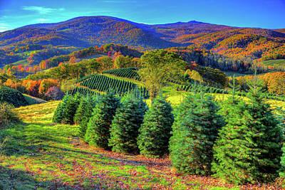 Photograph - Autumn Christmas Spirit by Dale R Carlson