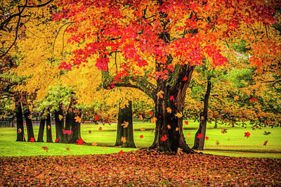 Photograph - Autumn City Park Scene With Falling Leaves by Randall Nyhof