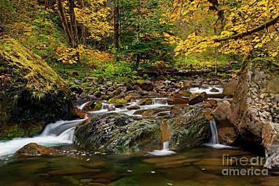 Photograph - Autumn Clear by Mike Dawson