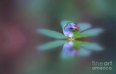 Autumn Clover Droplet Art Print by Kym Clarke