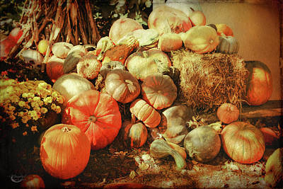 Photograph - Autumn Collection by Theresa Campbell