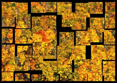 Digital Art - Autumn Color Abstract by Ron Grafe