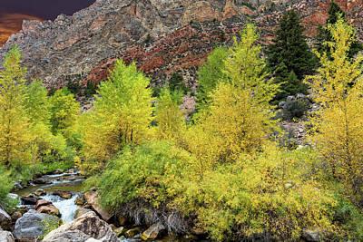 Photograph - Autumn Color Along Sheep Creek by Kathleen Bishop