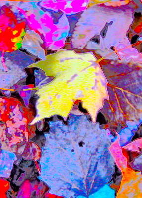Photograph - Autumn Color Blurs 193 by George Ramos