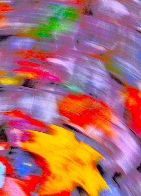 Photograph - Autumn Color Blurs 194 by George Ramos
