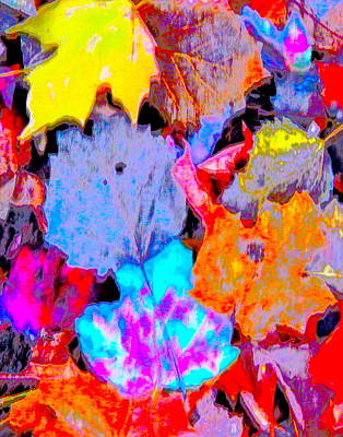 Photograph - Autumn Color Blurs 195 by George Ramos