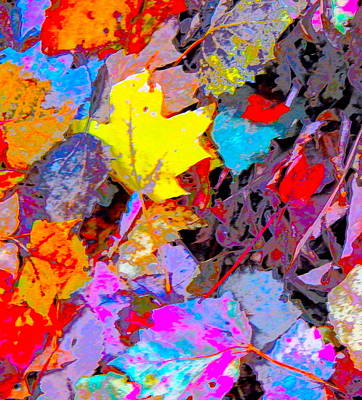 Photograph - Autumn Color Blurs 200 by George Ramos