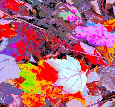Photograph - Autumn Color Blurs 202 by George Ramos