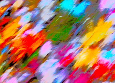 Photograph - Autumn Color Blurs 215 by George Ramos