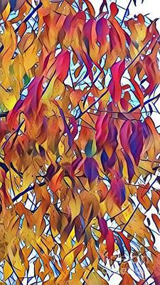 Photograph - Autumn Color by Diane Miller