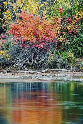 Photograph - Autumn Color Explosion Along Boise River by Vishwanath Bhat