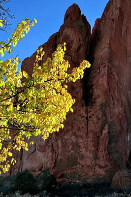 Photograph - Autumn Color Garden Of The Gods by Jerry Sodorff