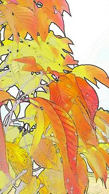 Color Digital Art - Autumn Color by Kumiko Izumi