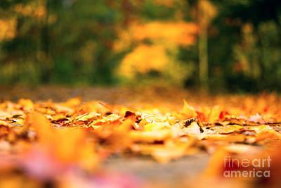 Autumn Yellow Color Original by Qingrui Zhang