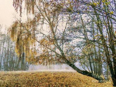 Autumn Colorful Birch Trees Paint Art Print by Odon Czintos