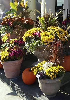 Photograph - Autumn Colorful Gifts  by Irina Sztukowski