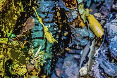 Photograph - Autumn Colorification  by Kenneth James