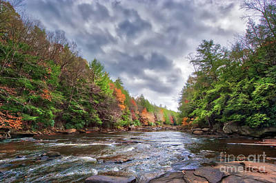 Photograph - Autumn Colors Ablaze On A Wild River In The Appalachian Mountain by Patrick Wolf