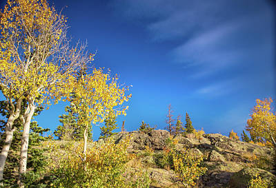 Photograph - Autumn Colors Along Dream Lake by Kunal Mehra