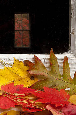 Autumn Leaf Photograph - Autumn Colors by Andrew Soundarajan