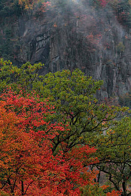 Photograph - Autumn Colors At Crawford Notch by Dan Sproul