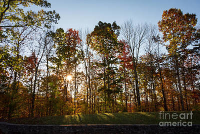 Photograph - Autumn Colors At Sunrise - Natchez Trace by Debra Martz