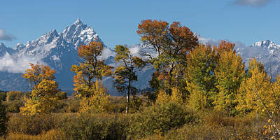 Photograph - Autumn Colors At The Tetons by Yeates Photography