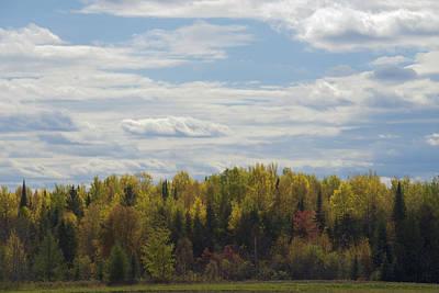 Photograph - Autumn Colors by Chris Alberding