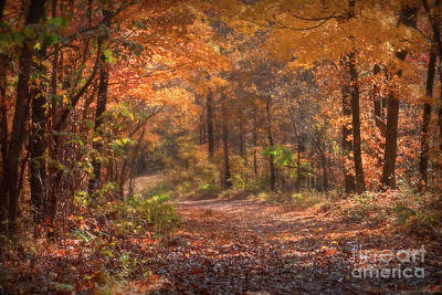 Photograph - Autumn Colors Country Roads by Peggy Franz