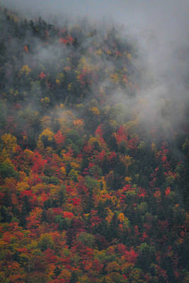 Photograph - Autumn Colors In The Clouds by Dan Sproul