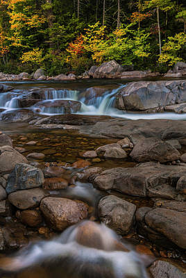 State Word Art - Autumn Colors in White Mountains New Hampshire by Ranjay Mitra
